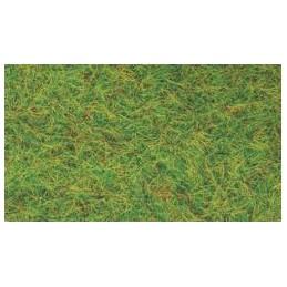 Fili d'erba - Verde Primavera