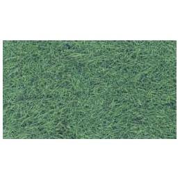 Fili d'erba - Verde Brughiera